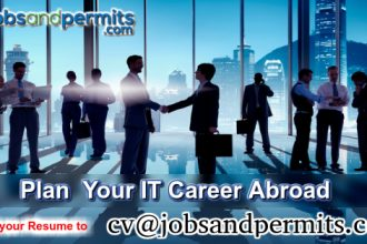 it career abroad