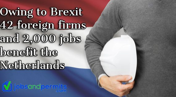 Owing to Brexit 42 foreign firms and 2,000 jobs benefit the Netherlands